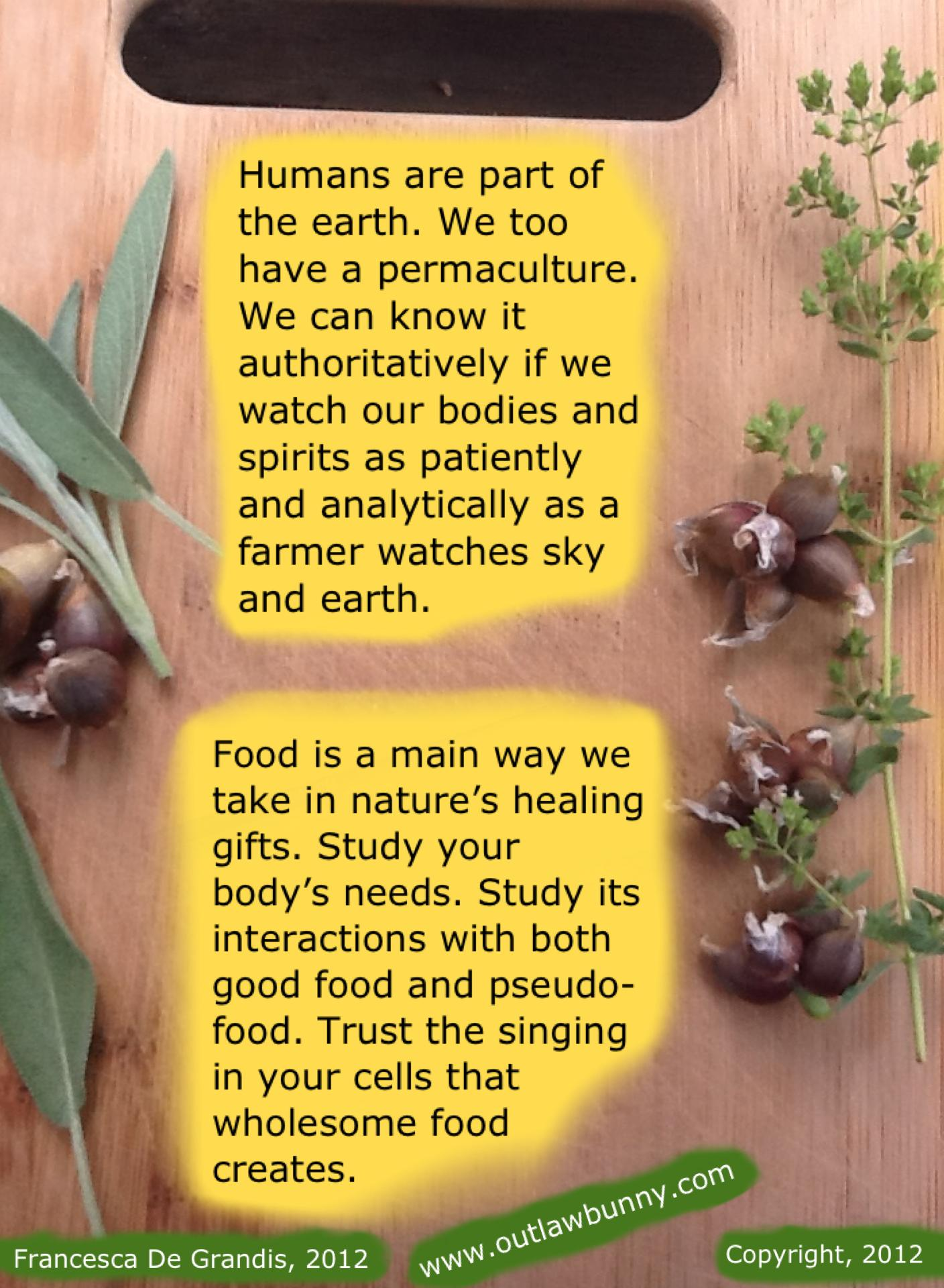 PersonPermaculture2012